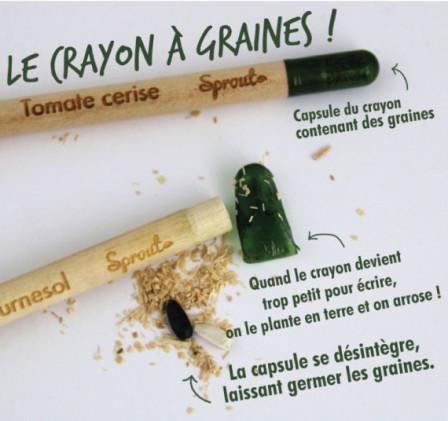 Le crayon à graines