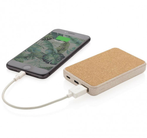 Powerbank Paille 5000 mAh